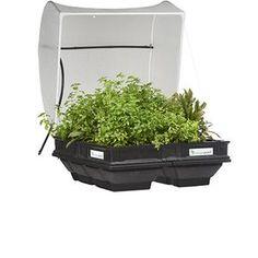 Vegepod Raised Garden Beds
