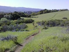Excellent rolling mountain bike and running trails near Portola Valley and Palo Alto.