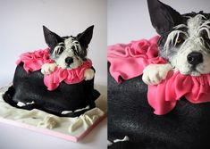 Jack Russel in a dog bag Unique Birthday Cakes, Gravity Cake, Meringue Cake, Cool Cake Designs, Cakes Today, Sculpted Cakes, Animal Cakes, Dog Bag, Cake Decorating Techniques