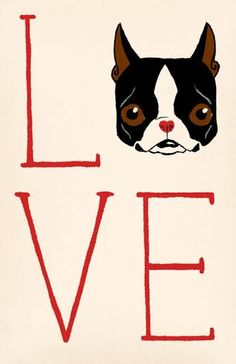 LOVE 11 x 17 Boston Terrier dog art by rubenacker on Etsy, $30.00