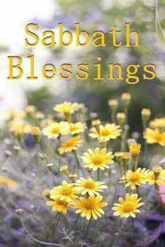 Sabbath is a blessing! Happy Sabbath, Sabbath Day, Seventh Day Adventist, Shabbat Shalom, Sabbats, A Blessing, Land Scape, Verses, Blessed