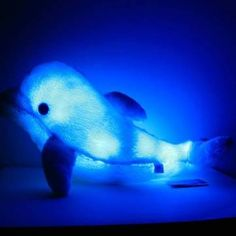 Plush Colorful LED Light Blue Dolphin Shape Throw Pillow - US$14.90 - Banggood Mobile