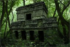 Life Goal #?: Explore Mayan jungle ruins without tourists around!