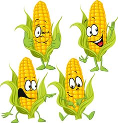 Corn cartoon characters vector material