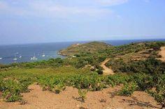 Cherchez-vous un terrain pour une future construction ? Découvrez cette annonce sur OOservices.fr http://www.ooservices.fr/petites-annonces/terrain-a-vendre++/beau-terrain-loisirs-et-cabanon-paulilles-proche-mer-et-banyuls/lid:6265