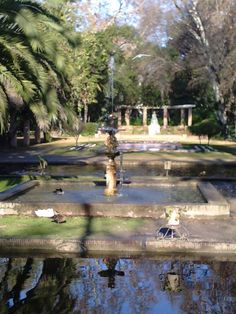 This fountain is in the Maria Luisa Park in Seville, Spain.
