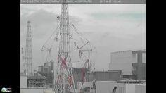 Green Clouds Over Fukushima 4-7-2017 | Organic Slant
