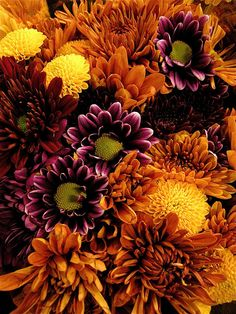The colours of Autumn.  'Fall bouquet' by Gracie's Ephemera =)