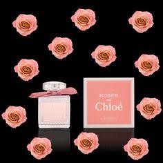 Roses de Chloé #perfumes #chloe #roses #fragrances #flowers Parfum Chloe, Boutique Parfum, Cologne, Etiquette Vintage, Chloe Rose, Rose Perfume, Rose Soap, Cosmetic Packaging, Summer Breeze
