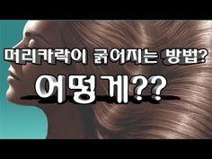 [스빈큐] 머리카락이 굵어지는 방법이 있어?/머리카락이 굵어지는 음식/머리카락 굵어지는 방법! - YouTube Diy Hair Care, Body Hacks, Holidays And Events, Diy Hairstyles, Beauty Care, Life Hacks, The Cure, Health Fitness, Lose Weight