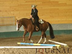 As the horse goes over the pole, he should elevate his back, drop his neck and keep his shoulders up and square. Journal photo