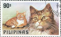 """Striped Tabby Cat - Postage stamp, Philippines (1979) - """"Cat and Dog Stamps"""" series"""