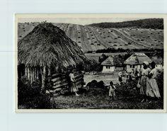 Carpathian Ruthenia