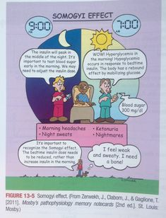 nursing notes | Somogyi Effect #nursing #diabetes #insulin