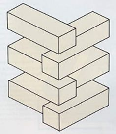 Optical Illusions and Visual Perception Puzzles: Loonie Logs
