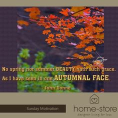 """Home-Store brings you a little inspiration for this Autumn day. """" No spring nor summer beauty hath such grace. As I have seen in one Autumnal face. We trust that you are warm, inspired, and that you have a fabulous day."""