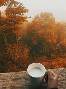 Fall Pictures, Fall Photos, Cozy Aesthetic, Autumn Cozy, Autumn Feeling, Autumn Scenes, Autumn Photography, Autumn Aesthetic Photography, Fall Wallpaper