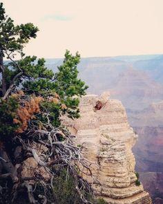 El #Parque Nacional del #GranCañón declarado #Patrimonio de la #Humanidad desde 1979 fue creado por el potente río #Colorado. Se encuentra en el Estado de #Arizona. Esas #rocas tienen de 230 a 2000 millones de años. No son simples #piedras. Su #grandeza su #magnitud resulta abrumadora. #EstadosUnidos #USA #America #UnitedStates #UnitesStatesofAmerica #Naturaleza #Nature #grandcanyon #grandcanyonnationalpark #grandcanyonsouthrim #southrim #grandcanyonstate