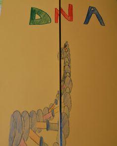 Coltivando fra fornelli e monelli: LAPBOOK DNA