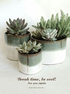 Beautiful pottery and succulents!