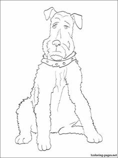 irish terrier coloring pages - photo#18