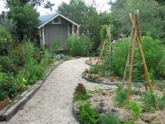 keyhole permaculture garden in NZ