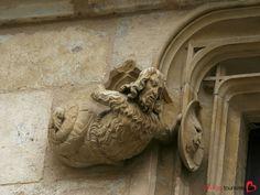 Bourges, St Etienne, Kitsch, Berry, Lion Sculpture, France, Statue, Architecture, Art