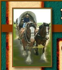 An annual family oriented covered wagon train adventure, history talks, camping, nature lore, saddle horses permitted. The wagon train is usually held during the month of June and starts at Jamestown, North Dakota.