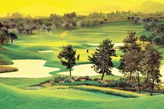 Olazabal Course, Mission Hills, Shenzhen, China... #golf #courses
