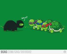 A True Ninja Turtle vs TMNT.