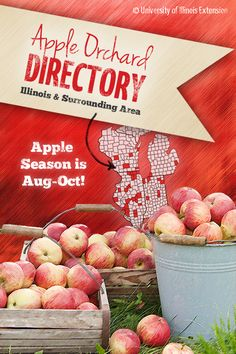 It's APPLE PICKING season! A great date, friend, or family activity. Click to find a local orchard near you.
