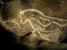 Horse, Grotte Chauvet