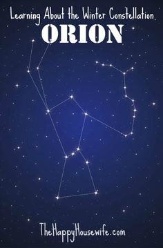 Fun Homeschool Project for All Ages: Learning About the Winter Constellation, Orion | The Happy Housewife