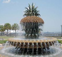 Waterfront Park was beautiful! It is awesome, and a definite place to stop while in Charleston, SC!