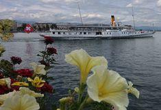 Opera House, Building, Travel, Swiss Guard, Ships, Viajes, Buildings, Trips, Construction