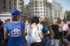 FOTOGALERÍA Concierto de David Bisbal en la Plaza de Toros de València (Fotos: ESTRELLA JOVER) - Valencia Plaza