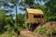 Maison moderne ossature bois ossature bois maison - Zen forest house seulement pour cette maison en bois ...