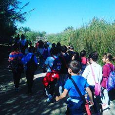 Aprendemos a través de la #naturaleza. Hoy nos visitan alumnos de 3ero de primaria del cole 8 de Abril de San Antonio de Benangéber.  #ribaroja #ríoTúria #parquenatural #turismo