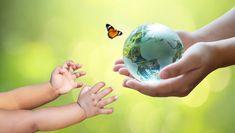 Los adultos están enviando el mundo a lo... | Premium Photo #Freepik #photo #arbol #personas #bebe #mano Growing Seedlings, Tree Seedlings, Save Environment, World Environment Day, Black Soil, Forest Conservation, Bokeh Background, Tropical Forest, Greenhouse Gases