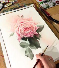 #watercolor #watercolour #watercolorpainting #watercolor_gallery #watercolor_blog #waterblog #aquarelle #art #artist #art_empire #art_collective #art_gallery #illustration #illustrator #topcreator  #drawing #painting #paint #rose #акварель  #художник