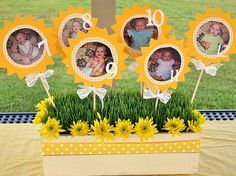 What a cute way to display your babies pictures for a 1st Birthday Party! by Snoozzinsuz2