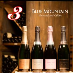 Sparkling Wine, Blue Mountain, Wines, Bubbles, Sparkle, Thankful, Events, Holidays, Mountains