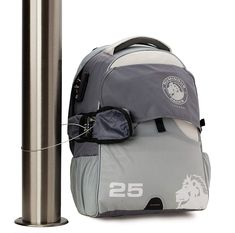 Numinous Packs GlobePacs Anti-Theft Travel Daypack, 25 Liter -- Be sure to check out this awesome product. (This is an affiliate link) Travel Backpack, Packing, Backpacks, Link, Bags, Awesome, Check, Bag Packaging, Handbags