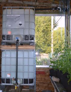 There are several advantages of using aquaponics for your organic gardening. Not only is it easier than a traditional garden, but it is movable and produces protien to consume too. Aquaponics Greenhouse, Aquaponics Plants, Hydroponics System, Hydroponic Gardening, Organic Gardening, Best Insulation, Backyard Projects, Growing Herbs, Fish Tank