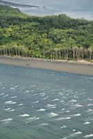 Las zonas deltaicas y las llanuras aluviales costeras son muy vulnerables a la erosión causada por el ascenso del nivel del mar.