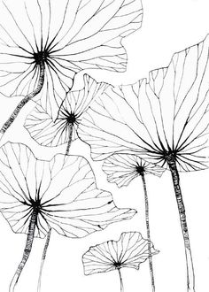 25 ideas flowers drawing doodles inspiration zentangle patterns drawing flowers is part of pencil-drawings - pencil-drawings Art Floral, Floral Design, Doodle Inspiration, Zentangle Patterns, Doodle Patterns, Floral Patterns, Embroidery Patterns, Silk Painting, Art Design