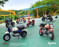 Honda Monkey (all models)