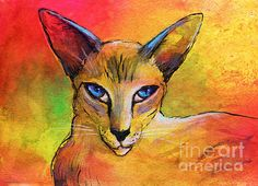 Colorful Oriental Shorthair Cat Painting Painting by Svetlana Novikova