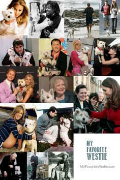 Can you name that celebrity? Famous people love Westies, too!