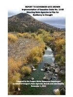 Report to Governor Kate Brown, implementation of executive order no. 15-09, directing state agencies to plan for resiliency to drought, by the Oregon Water Resources Department